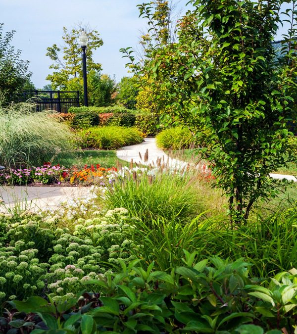 Acres Produces Excellence In All Things Landscaping