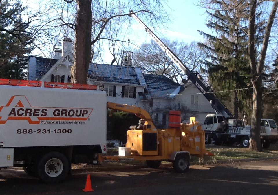 Acres Tree Care – Large Crane Removal — Geneva, IL