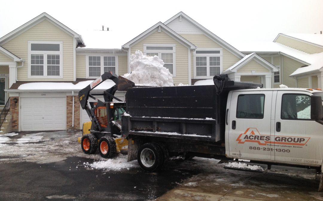 Snow Relocation