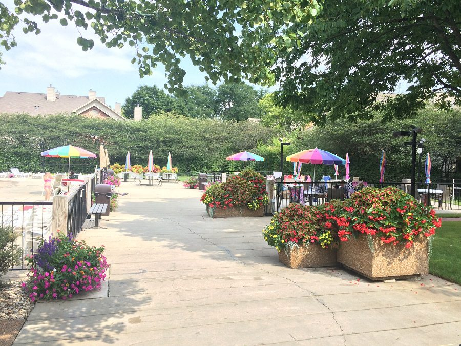 The Cove in Lombard Has Great Flower Containers By Acres Group