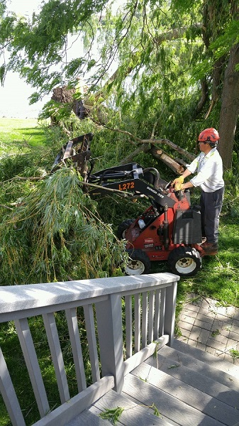 Acres Tree Care