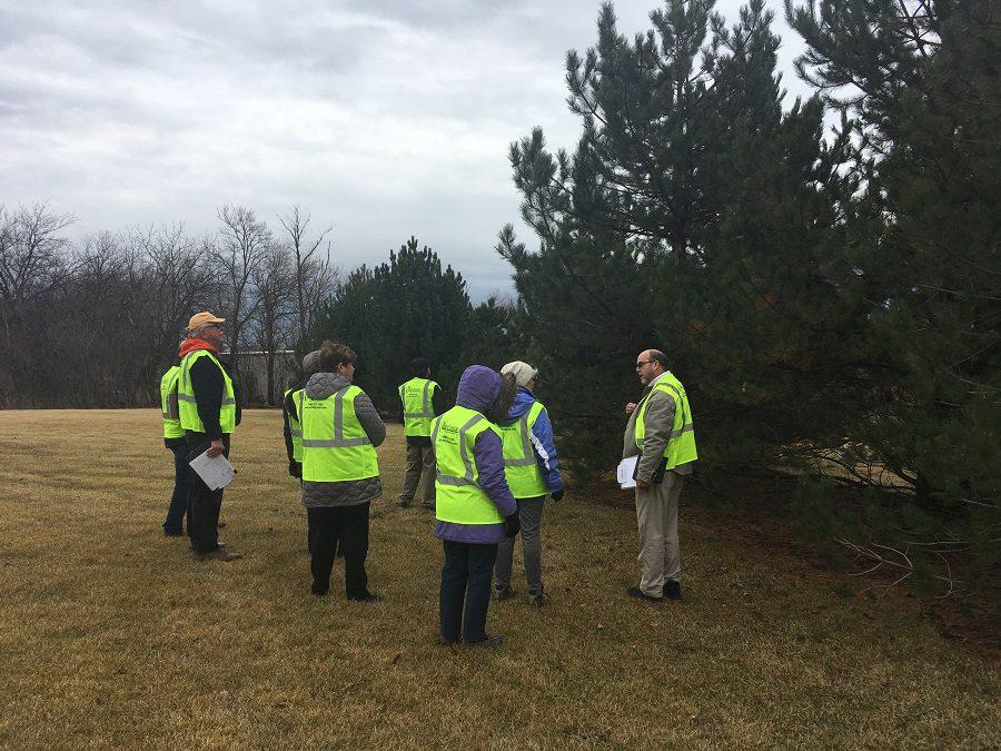 Expert Arbor Inspection