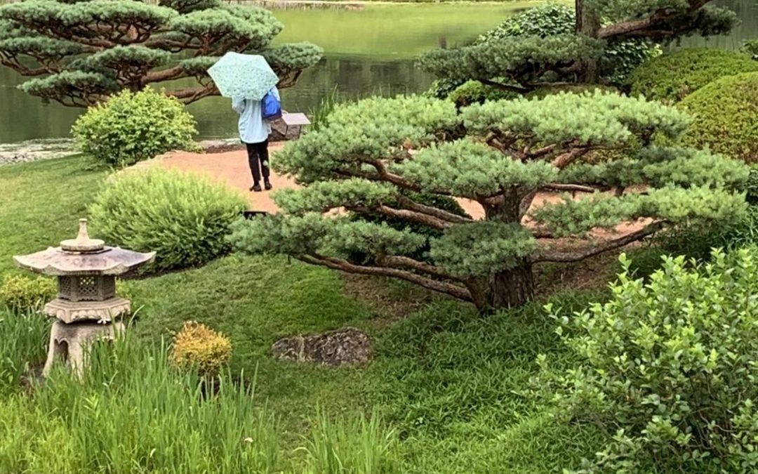 Chicago Botanic Garden Event